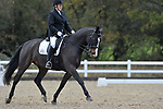 Class 6. Elementary 59. British Dressage. Brook Farm training centre. Essex. UK. 11/11/2017. ~ MANDATORY CREDIT Garry Bowden/Sport in Pictures - NO UNAUTHORISED USE - +44 7837 394578