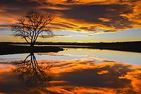 A stunning November sunset explodes over Cherry Creek Reservoir near Denver, Colorado.