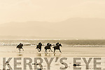 Ballyheigue Races on New Years Day.