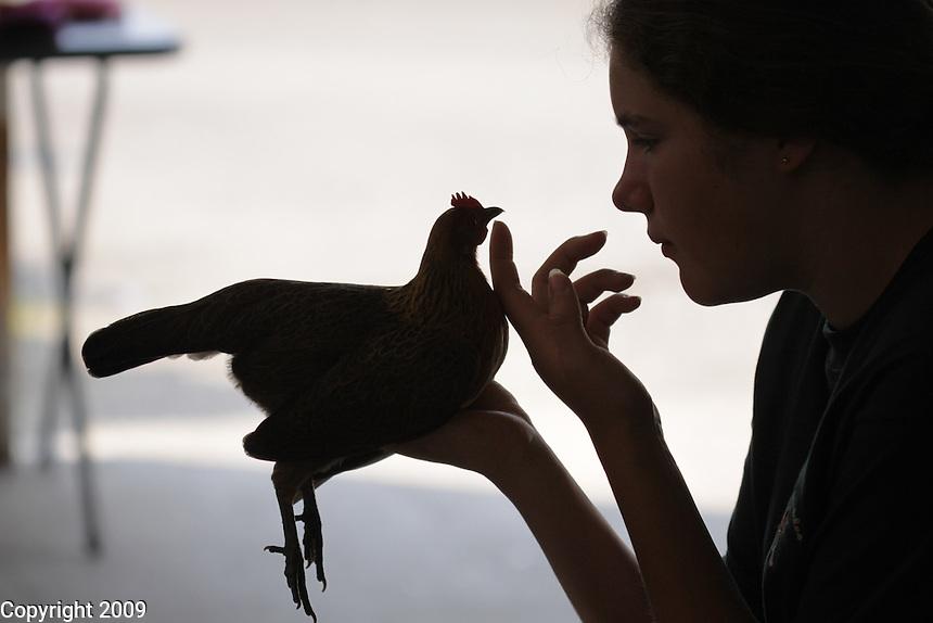 Riley Edmonds of Blaine, WA (360-371-3200)-with Athena, a light brown dutch chicken, Intermediate Champion-6th yr-4H Feathered Friends-NW Washington Fair. August 19, 2009 PHOTOS BY MERYL SCHENKER            ..schenker IMG_9390.JPG