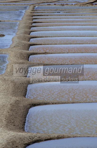 Europe/France/Pays de la Loire/44/Loire-Atlantique/Guérande: Les marais salants