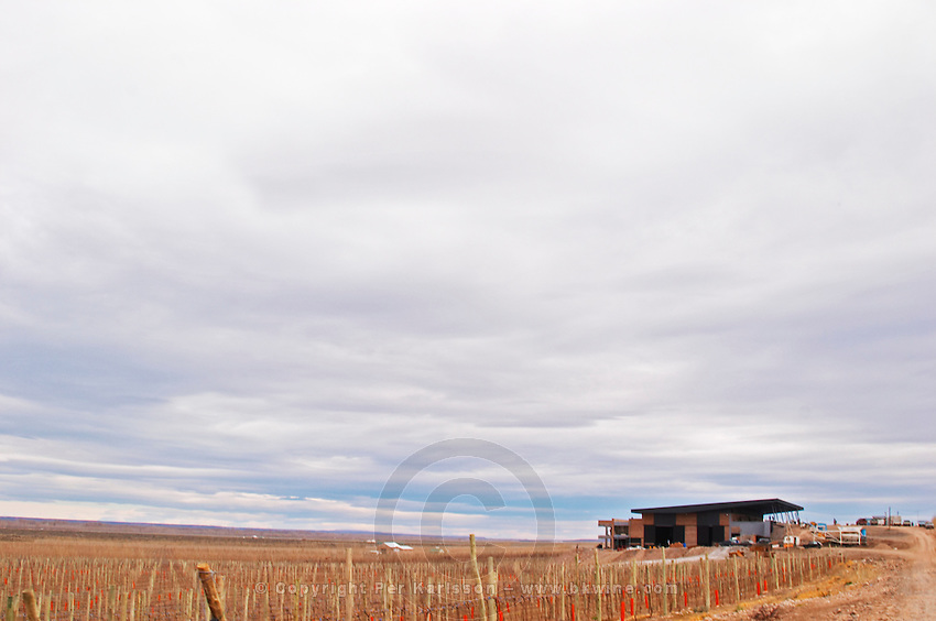 View over the vineyard and winery Bodega Valle Perdido (previously Arquen) Winery, Neuquen, Patagonia, Argentina, South America