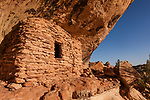 An ancient 1,000 year old Ancestral Puebloan cliff dwelling in Lower Mule Canyon on Cedar Mesa in the Shash Jaa Unit of the Bears Ears National Monument in southeastern Utah.  At right is a boulder with metates for grinding maize worn in the upper edge.