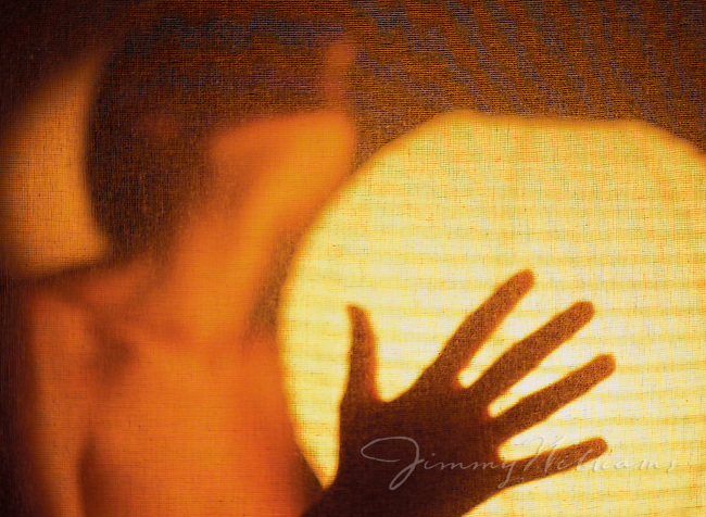 A woman embraces a paper lantern behind a thin screen