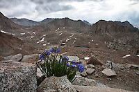 One day hike to top of Mt Whitney in the Eastern Sierra. Photos taken in Mt Whitney, CA on July 20, 2008. (Photos by Anacleto Rapping©2008)