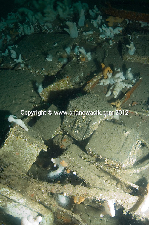 Scattered battery boxes on the shipwreck of the S.S. Exmouth