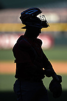 Arizona Diamondbacks catcher Michael Perez (7) silhouette during an Instructional League game against the Oakland Athletics on October 10, 2014 at Chase Field in Phoenix, Arizona.  (Mike Janes/Four Seam Images)