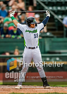21 July 2019: Vermont Lake Monsters designated hitter Jose Rivas in action against the Tri-City ValleyCats at Centennial Field in Burlington, Vermont. The Lake Monsters rallied to defeat the ValleyCats 6-3 in NY Penn League play. Mandatory Credit: Ed Wolfstein Photo *** RAW (NEF) Image File Available ***