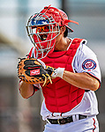 22 February 2019: Washington Nationals catcher Kurt Suzuki takes drills at home plate during a Spring Training workout at the Ballpark of the Palm Beaches in West Palm Beach, Florida. Mandatory Credit: Ed Wolfstein Photo *** RAW (NEF) Image File Available ***