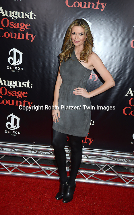 "Carly Steel  of the Insider attends the New York Premiere of ""August: Osage County"" on December 12, 2013 at the Ziegfeld Theatre in New York City."