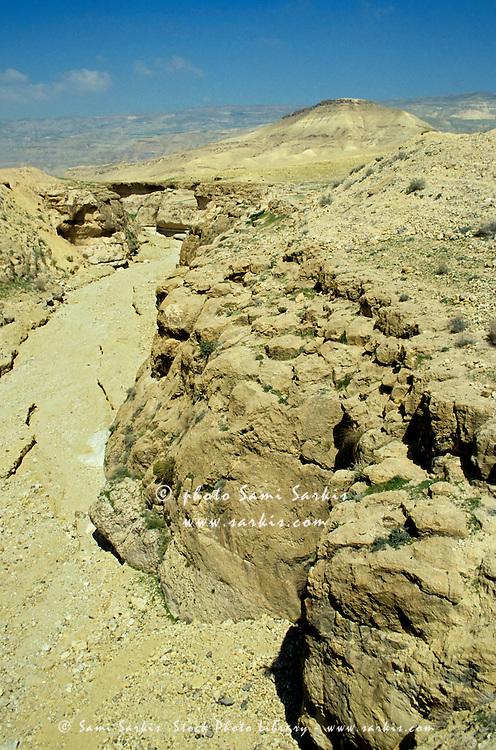 Dirt road in the desert landscape between Tafila and Kerak, Jordan.