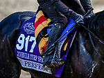 November 1, 2018: So Perfect, trained by Aidan P. O'Brien, exercises in preparation for the Breeders' Cup Juvenile Turf Sprint at Churchill Downs on November 1, 2018 in Louisville, Kentucky. Michael McInally/Eclipse Sportswire/CSM