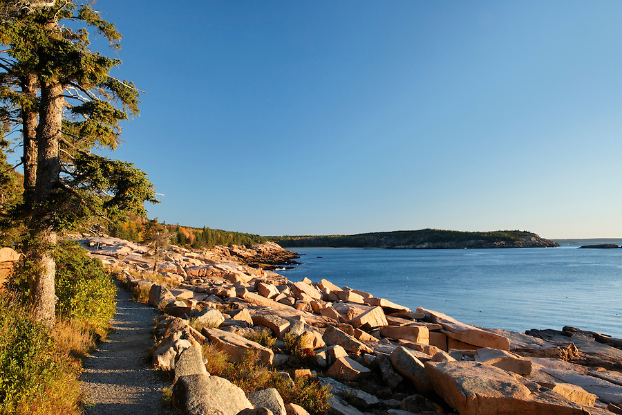 Trail along rocky shoreline, Frenchman Bay, Mount Desert Island, Acadia National Park, Hancock County, Maine, USA