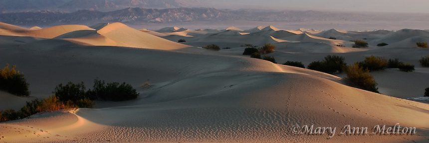 Dawn light at the dunes at Death Valley