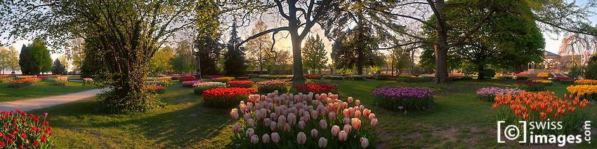 "Panorama view from ""Fête de la Tulipe"" in Morges/Switzerland"