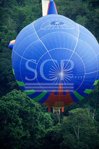 Makande, Gabon. The Dirigible from the front flying low over the rainforest canopy.