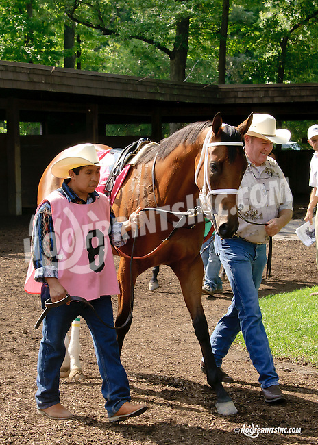 Amizzen Grace in the paddock at Delaware Park on 7/30/14