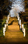 White posts and steps lit by late afternoon spring sunlight