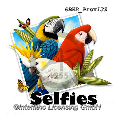 Howard, SELFIES, paintings+++++selfie parrots,GBHRPROV139,#Selfies#, EVERYDAY