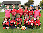 Walshestown Panthers U-8. Photo:Colin Bell/pressphotos.ie