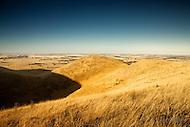 Image Ref: H010<br /> Location: Mt Elephant, Derrinallum<br /> Date: 1st March 2014