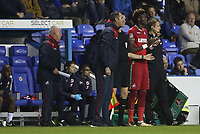 Tammy Abraham of Swansea City replaces Wilfried Bony of Swansea City during the Carabao Cup Third Round match between Reading and Swansea City at Madejski Stadium, Reading, England, UK. Tuesday 19 September 2017