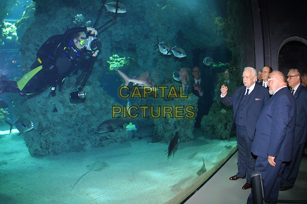 PRINCE ALBERT.Oceanogriphic Museum, Inauguration of  The Shark Tank.Ref: STF.www.capitalpictures.com.sales@capitalpictures.com.©Capital Pictures