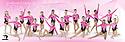 2016 - 2017 Gymnastics Elite Gymnastics