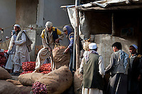 Kabul wholesale market 13-9-10