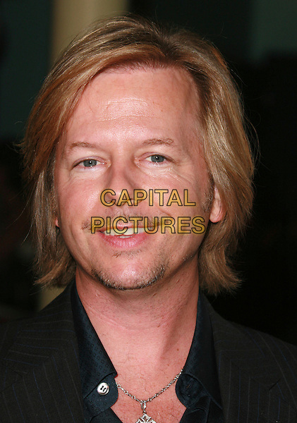 "DAVID SPADE.""I Think I Love My Wife"" Los Angeles Premiere held at ArcLight Cinemas, Hollywood, California, USA..March 7th, 2007.headshot portrait facial hair .CAP/ADM/CH.©Charles Harris/AdMedia/Capital Pictures"