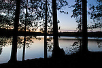A grove of trees are silhouetted as dusk settles on Galerairy Lake in Ontario's Algonquin Provincial Park in Canada.