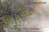 Marek, LANDSCAPES, LANDSCHAFTEN, PAISAJES, photos+++++,PLMP01046J,#L#, EVERYDAY