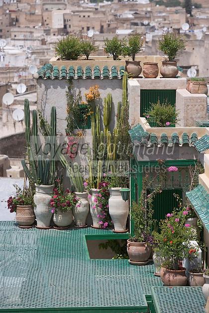 Afrique/Afrique du Nord/Maroc/Fèz: terrasse du Riad Palais de Fez ou Dar Tazi  - Vue sur les toits de la médina