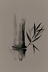 Beautiful Zen painting of bamboo stalk and leaves. Sumi-e Chinese Japanese black ink on rice paper fine art design on natural beige background