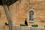 Israel, Jerusalem, Cypress tree at the Greek Orthodox Monastery of the Holy Cross
