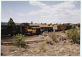 C&amp;TS excursion train at Big Horn wye.<br /> C&amp;TS  Big Horn, NM  Taken by Dorman, Richard L.