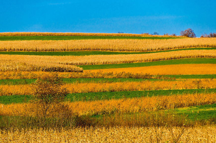 This image was named a finalist in the Landscape category of a statement photography contest sponsored by the Wisconsin Office of Rural Health in August, 2012.