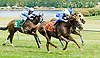 Twice the Price winning at Delaware Park on 6/11/12