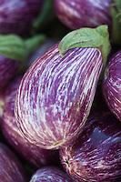 Europe/France/Provence-Alpes-Côte d'Azur/13/Bouches-du-Rhône/Arles: Aubergines sur le marché