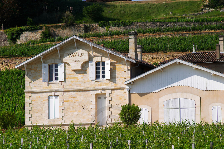 Chateau Pavie 1er premier first Grand Cru Classe and its vineyards Saint Emilion Bordeaux Gironde Aquitaine France