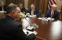 Polish President Andrzej Duda (L) with US president Donald J Trump (R) during a luncheon in the cabinet room of the White House in Washington, DC, USA, 12 June 2019. Later in the day President Trump and President Duda will participate in a signing ceremony to increase military to military cooperation including the purchase of F-35 fighter jets and an increased US troop presence in Poland. <br /> Credit: Shawn Thew / Pool via CNP/AdMedia