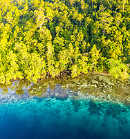 aerial view of coral reef and lush rainforest, Raja Ampat Islands, West Papua, Indonesia, Pacific Ocean