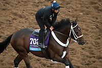 DEL MAR, CA - NOVEMBER 02: Firenze Fire, owned by Mr. Amore Stable and trained by Jason Servis, exercises in preparation for Sentient Jet Breeders' Cup Juvenile  during morning workouts at Del Mar Thoroughbred Club on November 2, 2017 in Del Mar, California. (Photo by Michael McInally/Eclipse Sportswire/Breeders Cup)
