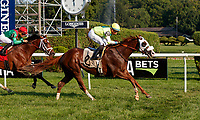 Im the Captain Now (no. 2) wins Race 9 Aug. 5, 2018 at the Saratoga Race Course, Saratoga Springs, NY.  Ridden by  Manuel Franco, and trained by Barclay Tagg,  Im the Captain Now finished 1 1/4 lengths in front of Pillar Mountain (no. 1).  (Photo credit: Bruce Dudek/Eclipse Sportswire)