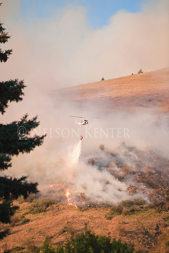 A helicopter drops water on a wildfire on Mount Sentinel in Missoula, Montana