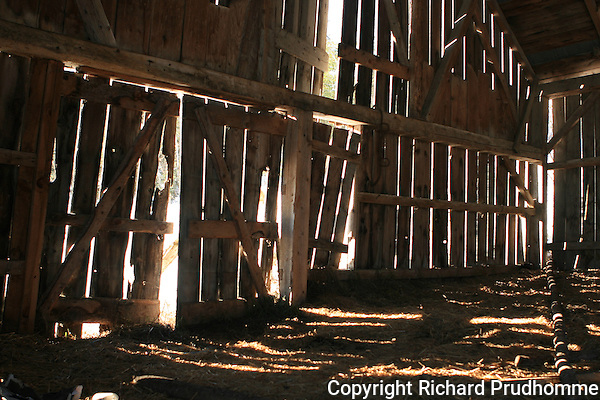 Inside old barn with sunlight seeping through cracks of barn boards with loose straw and hay on gorund, beautiful and serene, calm and eerie