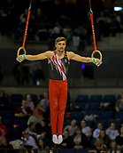 17th March 2019, M&S Arena, Liverpool, England; Gymnastics British Championships day 4; OLDHAM Sam, Notts Gymnastics Academy  Men's Artistic Masters Rings Final