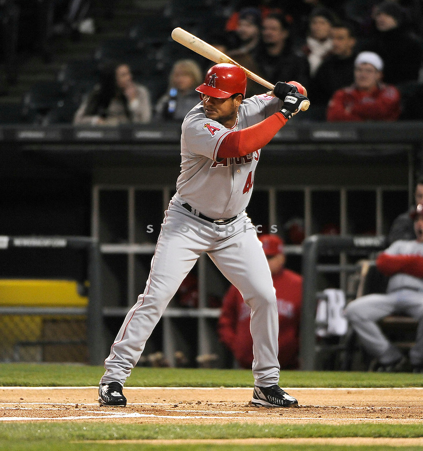 BOBBY ABREU, of the Los Angeles Angels, in action during the Angels game against the Chicago White Sox on April 15, 2011 at US Cellular Field in Chicago, Illinois.  The Angels beat the White Sox 4-3.
