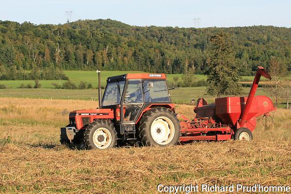 Modern day tractor pulling combine in oats field