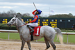January 24, 2020: Silver Ride with jockey Orlando Mojica aboard after winning 7th race at Oaklawn Racing Casino Resort in Hot Springs, Arkansas on January 24, 2020. Justin Manning/Eclipse Sportswire/CSM